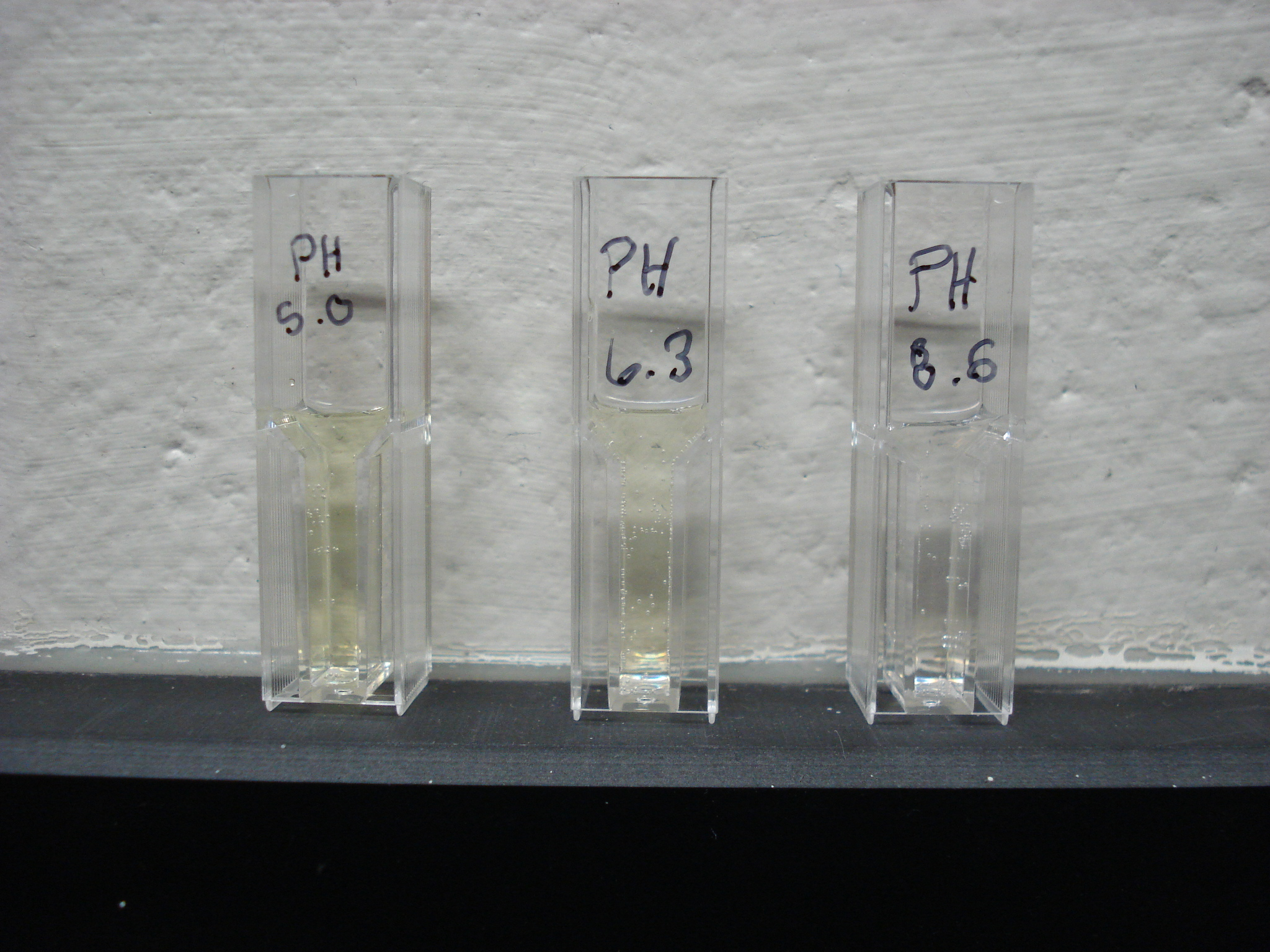 Enzyme Concentration Lab of Enzyme Concentration on